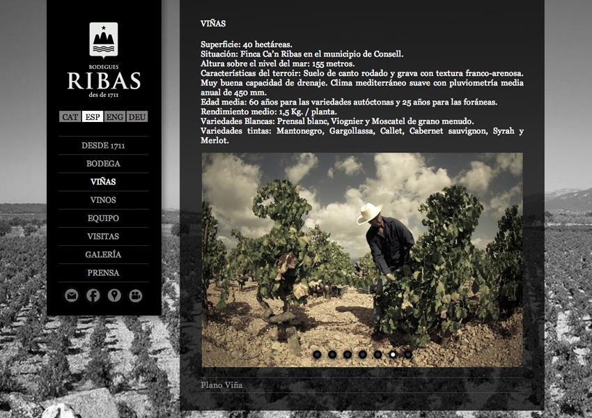 web-bogegasribas-3.jpg