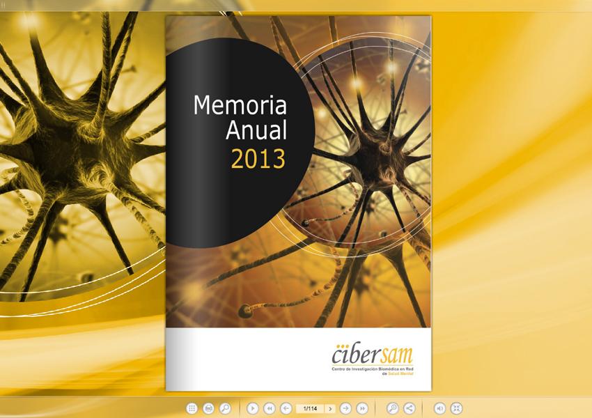ciber2.jpg