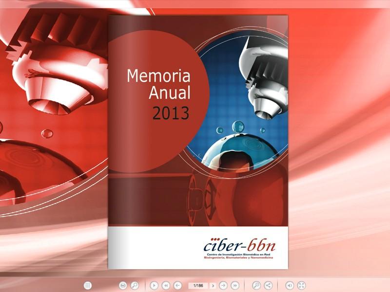 Memorias anuales Ciber 2013
