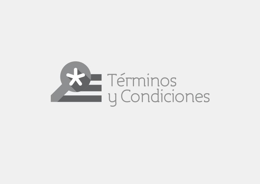 MockUp-TerminosyCondicionesG.jpg