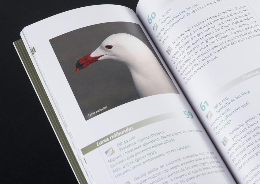 guia-ocells1.jpg
